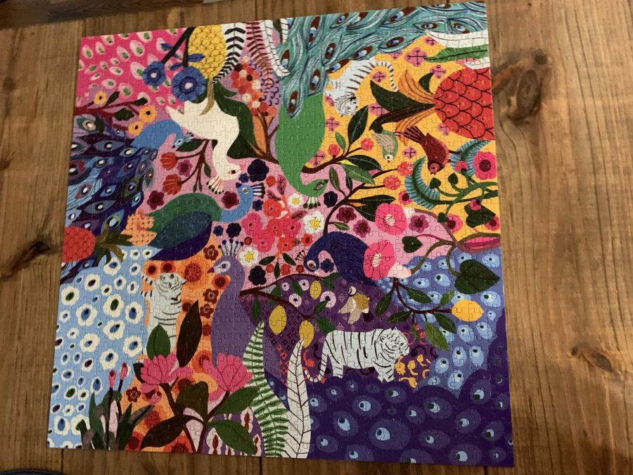 Ella Dzialowski, a current sophomore has been working on many puzzles to keep herself busy. This is one she finished recently.
