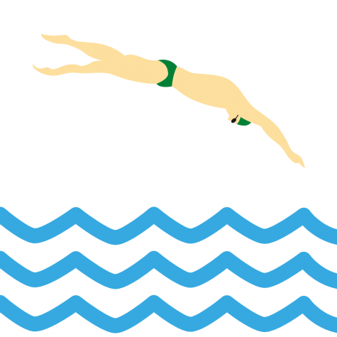 Swimmers took to the pools for the SPC North Zone meet.