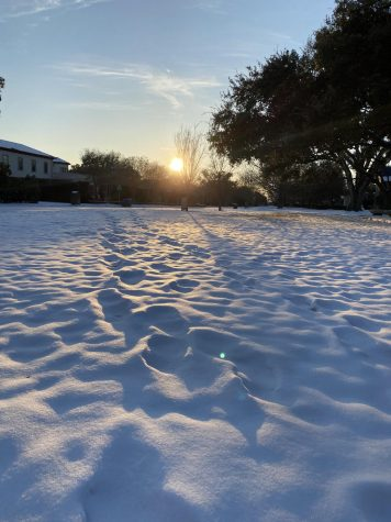 Dallas received several inches after the snow storm in mid-february.